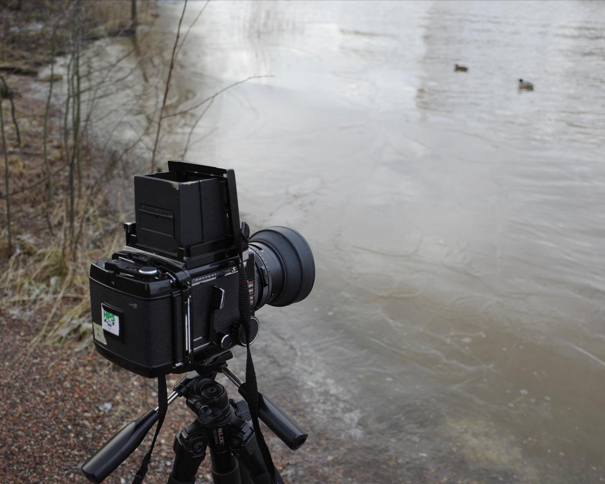 A medium-format camera on a tripod on a shore. There are two mallards swimming in the sea in the background.